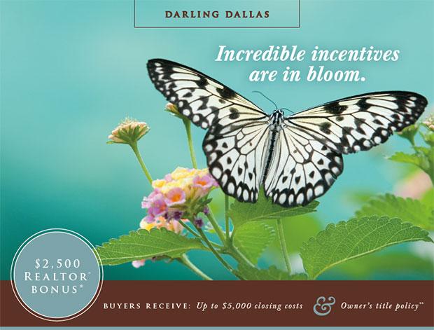 Darling Dallas